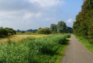 2015-3 Meerwijkplas_k